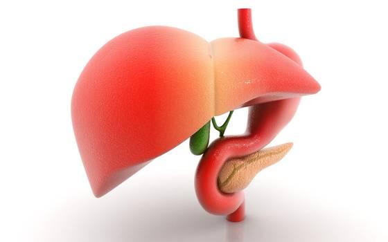 Liver Transplant Surgery Abroad- Turkey